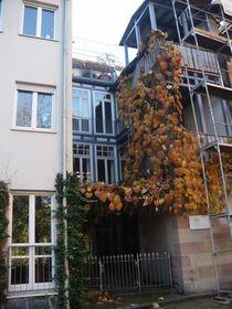 Häuser in Nürnberg  von Pia Roth