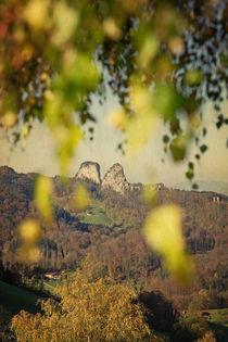 herbstlaub  -  fall(ing) leaves von augenwerk