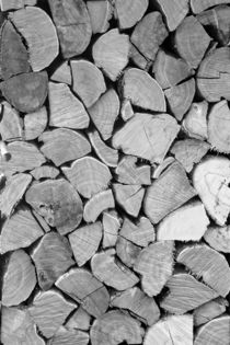 black'n white wood von augenwerk