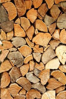 natural wood von augenwerk