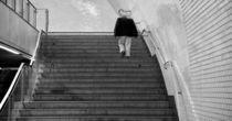step by step von joespics