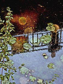 Wasserspiegelung-5 by Heidrun Carola Herrmann