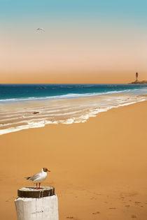 Ein einsamer Strand von Monika Juengling