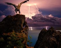 Eagle on a background of distant lightning flashes von Yuri Hope