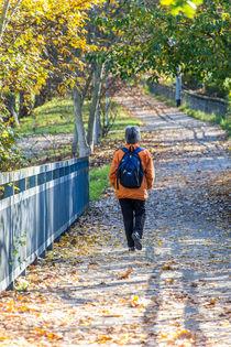 Spaziergang im Herbst von mroppx