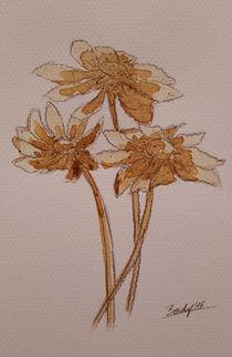 Coffee Flowers II by art-gallery-bendorf