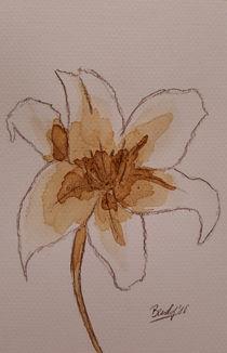 Coffee Flowers VI von art-gallery-bendorf