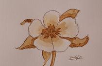 Coffee Flowers VII von art-gallery-bendorf
