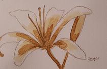 Coffee Flowers XIX von art-gallery-bendorf