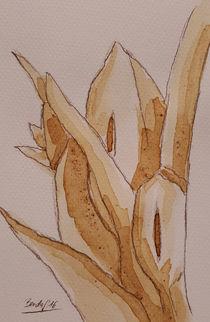 Coffee Flowers XV von art-gallery-bendorf