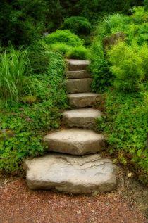 Stufen by Gabi Siebenhühner