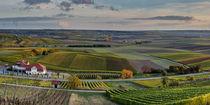 Herbstliches Rheinhessen (7.3) by Erhard Hess