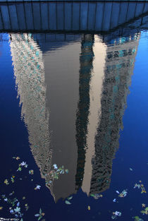 Reflection by bagojowitsch