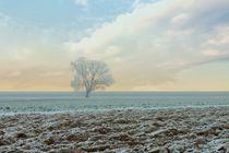 'ICY' von Photo-Art Gabi Lahl