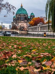 Berlinherbsti3roh