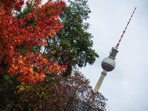 Berlinherbsti-2roh