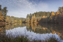 Autumn Reflected - 7 by David Tinsley