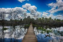 Water reflection by wamdesign