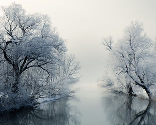 3h8a8923-winter-fairy-tale