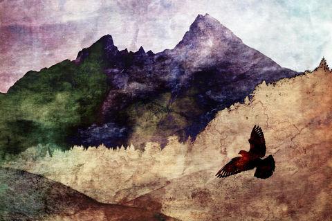 Watzmann-muted-bird