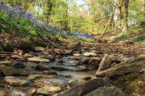 Bells by the Stream by David Tinsley