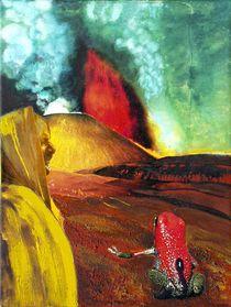 Pfeilgiftfrosch vor Vulkan von Heinz Sterzenbach