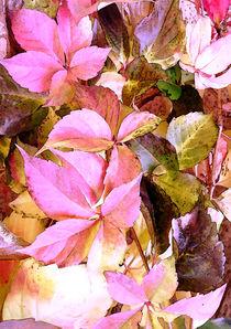 Garden-leaves-base