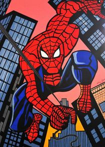 SPIDER MAN by Nora Shepley