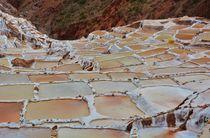 Salzbecken in Peru von Anita Pescosta