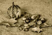 Herbst-artflakes