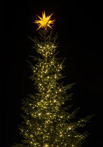 weihnachtsbaum by fotolos