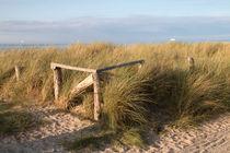 Zaun-auf-einer-dune