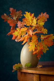 Herbstfarben von Nikolay Panov