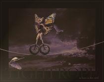 Tightrope von Gabriel Bur