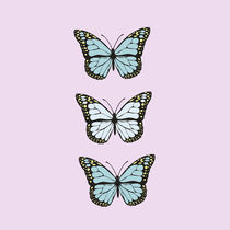 Butterflies collection by lescapricesdefilles