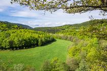 Landschaft mit Wald und Wiese im Thüringer Wald by Rico Ködder