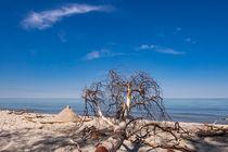 Der Weststrand an der Küste der Ostsee by Rico Ködder