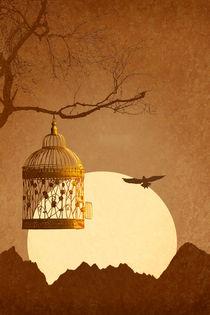 Freiheit vom goldenen Käfig by Monika Juengling