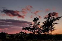 Sundown at Shulishader von Colin Metcalf