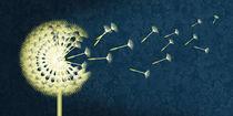 Die große Pusteblume by Monika Juengling