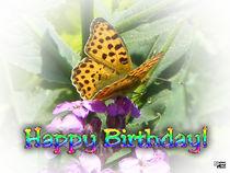 Birthday 46 von Norbert Hergl
