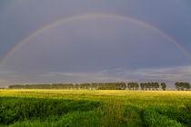 Regenbogen im Abendlicht von ropo13