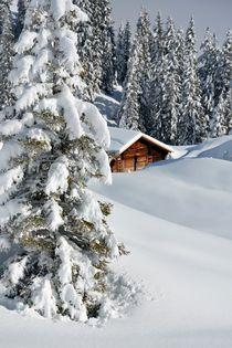 Winteridylle by Bettina Schnittert