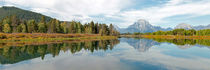 Grand Teton Panorama von Borg Enders