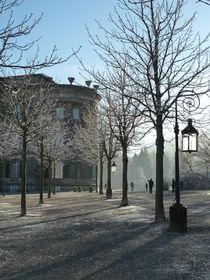 Bergpark in  Kassel 3 von Pia Roth