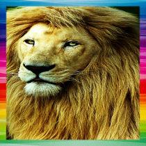 Lion With Rainbow Border von Blake Robson