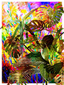 Tropical Plants and Flowers by Blake Robson