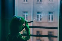 Kermit der Frosch by Marcel Fagin