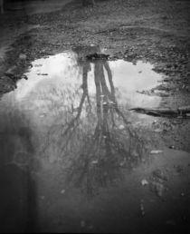 Analog Reflektion by dsl-photografie