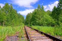 Summer. Forest. Railway von mnwind